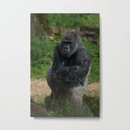 Jock The Gorilla Metal Print