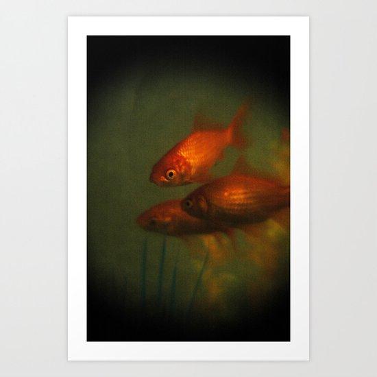 Goldfish In Antiquity  Art Print