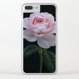 English Rose Collection Clear iPhone Case