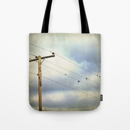 After the Rain - birds in flight photography Tote Bag