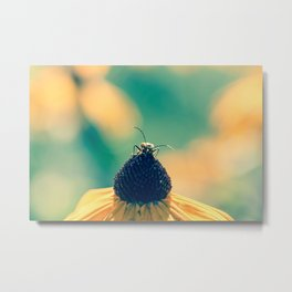 Take time to stop and smell flowers Metal Print