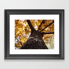 GREATOAK Framed Art Print
