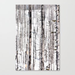 Winter Camouflage Canvas Print