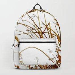 Weedy  Backpack