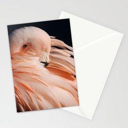 Portrait Of A Flamingo Stationery Cards
