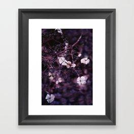 Small treasures Framed Art Print
