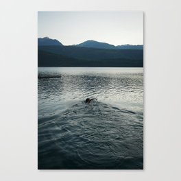 Late Summer Swim Canvas Print