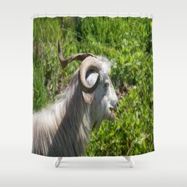 Side View of A Billy Goat Grazing Shower Curtain