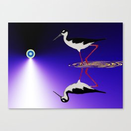 stilt bird Canvas Print