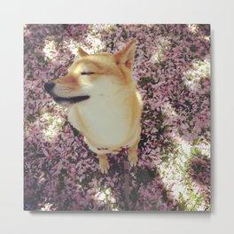 Cherry Blossom Metal Print