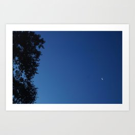 Book of Tree with Moon Art Print