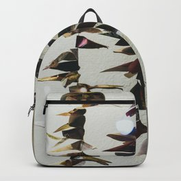 Raise the Flags Backpack