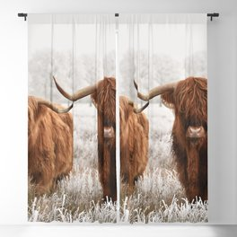 Hairy Scottish highlanders in a natural winter landscape. Blackout Curtain