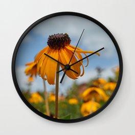 yellow rudbeckia flower in the garden Wall Clock