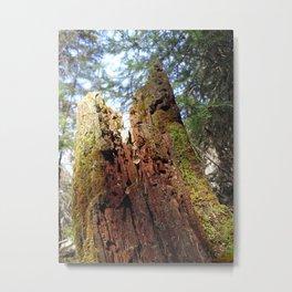 Wood Fairy Tower Metal Print