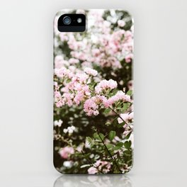 Crape Myrtle in New Orleans iPhone Case
