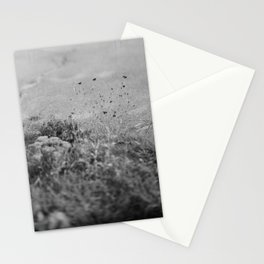 4x5 film photograph Stationery Cards