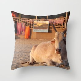 Bull on the Beach at Sunset Palolem Throw Pillow