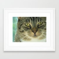 simba Framed Art Prints featuring Simba by Nonna Originals