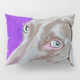 Pretty Penny Pillow Sham