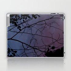 Changes At Dusk Laptop & iPad Skin
