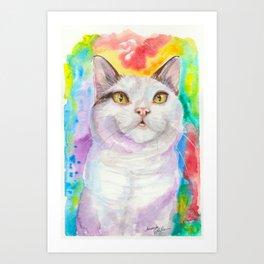 Dreamy White Cat Art Print