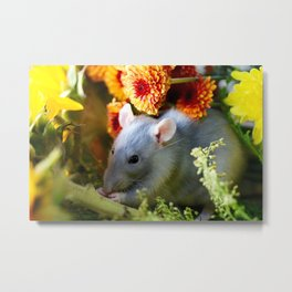 Sweet Floral Rat Metal Print