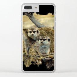 African Meerkat Trio Clear iPhone Case