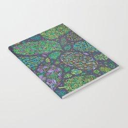 Nugs in Green Notebook