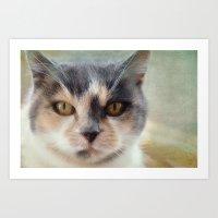minnie Art Prints featuring Minnie by Teresa Pople