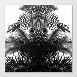 BW fern Canvas Print