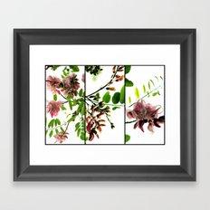 Joy of Spring Framed Art Print