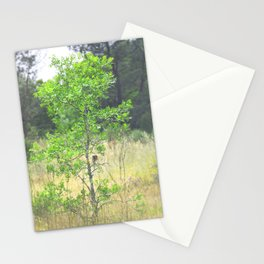 The litle acacia tree Stationery Cards