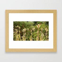 Retro Row Framed Art Print