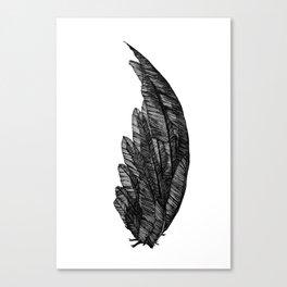 Black raven wing Canvas Print