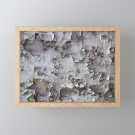 Ancient ceilings textures 132a Framed Mini Art Print