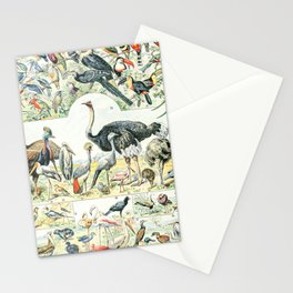 Exotic Birds // Oiseaux II by Adolphe Millot XL 19th Century Science Textbook Diagram Artwork Stationery Cards