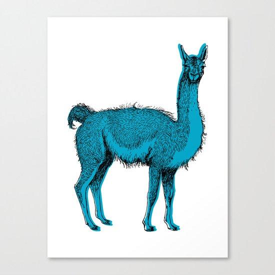 guanaco Canvas Print