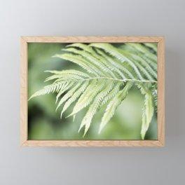 Fern 2 Framed Mini Art Print