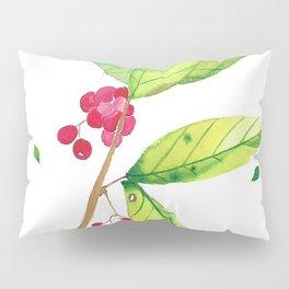 Spring 1 Pillow Sham