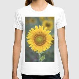 Tournesol jaune T-shirt