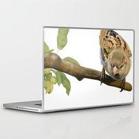 sparrow Laptop & iPad Skins featuring sparrow by Alessandra Razzi Illustrazioni