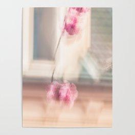 Cherry pom-pom Poster