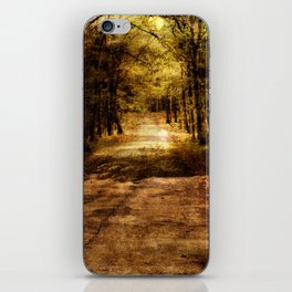 Forever Free Road iPhone Skin