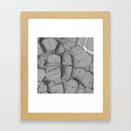 Fly-over Framed Art Print