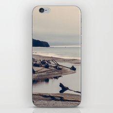 Vintage Ocean 04 iPhone & iPod Skin