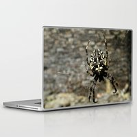 spider Laptop & iPad Skins featuring Spider by moo2me