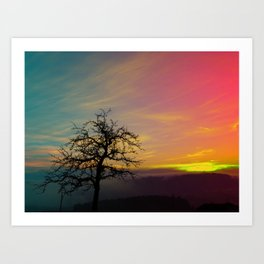 Old tree and colorful sundown panorama   landscape photography Art Print