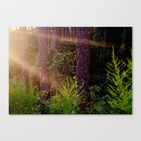 camp Canvas Prints featuring camp by Zoe Green