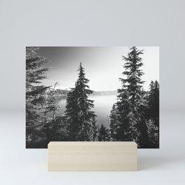 Mountain Lake Forest Black and White Nature Photography Mini Art Print
